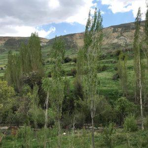 روستای طهنه فیروزکوه املاک سهرابی
